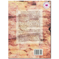 ANÁLISIS ESPACIAL DE LAS REMESAS MIGRACIÓN DE RETORNO Y CRECIMIENTO REGIONAL EN MÉXICO, Marco Valdivia López