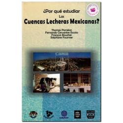 ¿PROBLEMAS EDUCATIVOS? Propuestas de conceptualización para Chiapas y Guerrero Rita Angulo Villanueva