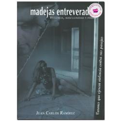 LA FRONTERA SUR DE MÉXICO, Del TLC, México-centroamérica al plan Puebla-Panamá, Daniel Villafuerte Solís