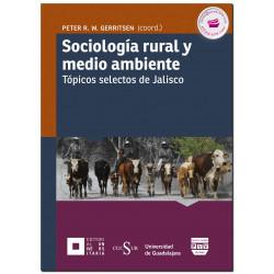 MIGRACIÓN LABORAL INTERNACIONAL Un enfoque basado en los derechos Organización Internacional del Trabajo